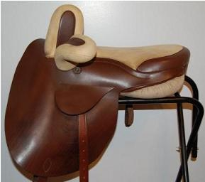 A Niedersuss(Rather Pricey New Sidesaddle)